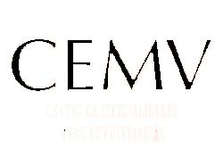 CEMV1 250x186 - Client 1