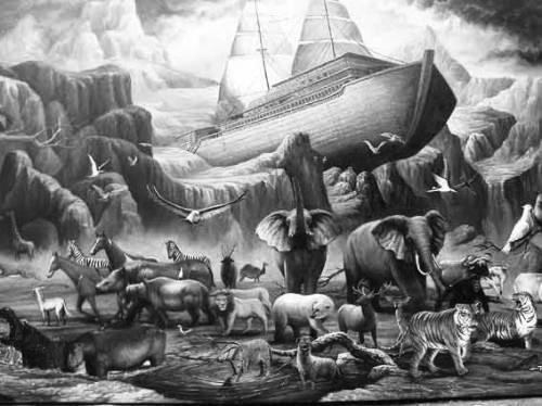 unnamed - Síndrome de Noé o Noah (Noah syndrome)